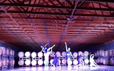 Exitosa función de Ballet en In Situ